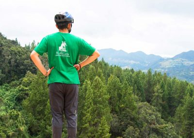 Este mirador permite observar una capa verde compuesta por pinos y cipreses de gran altura y de fondo las montañas de los cerros orientales de Bogotá.